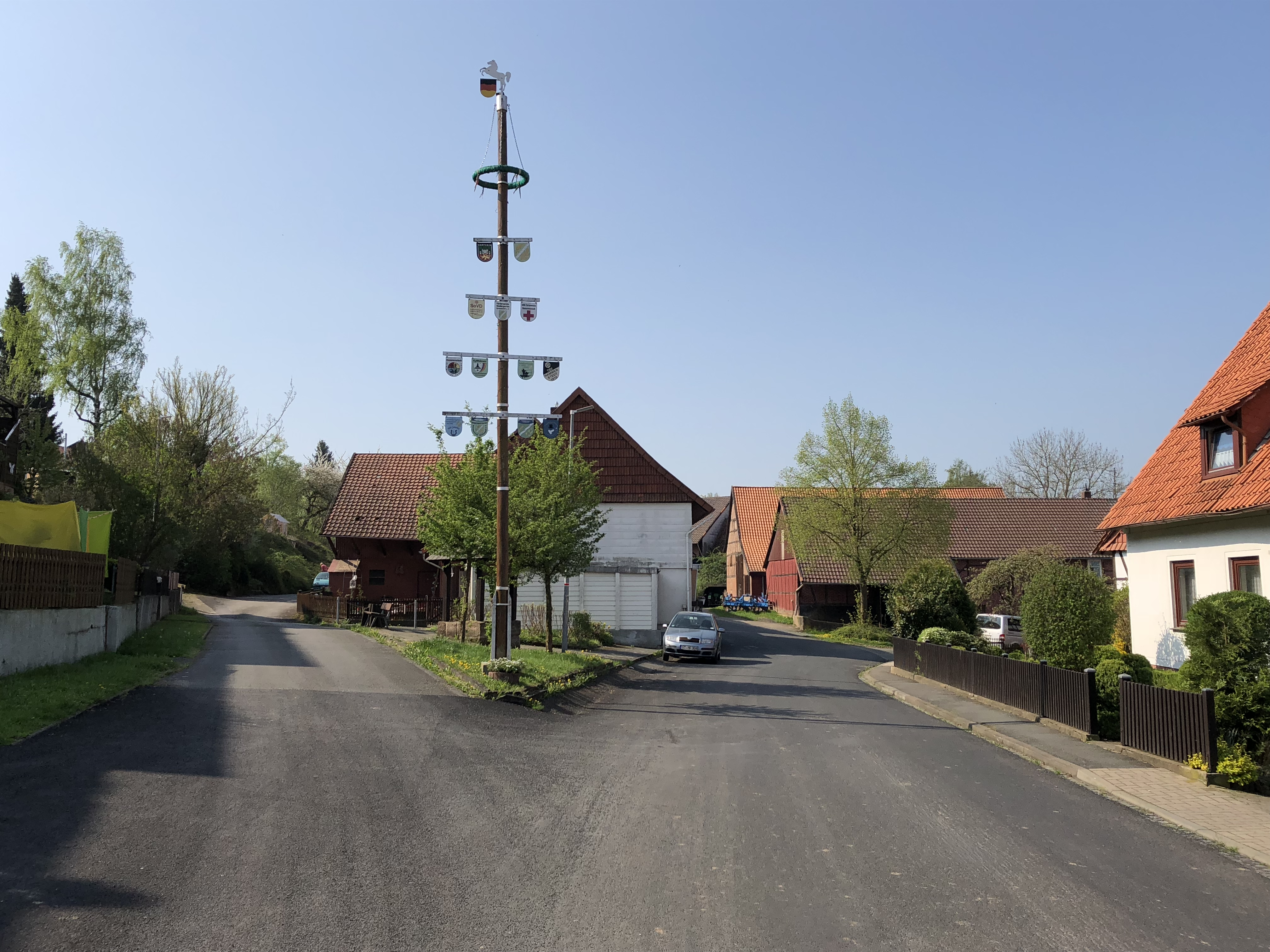 Maibaum Hammenstedt